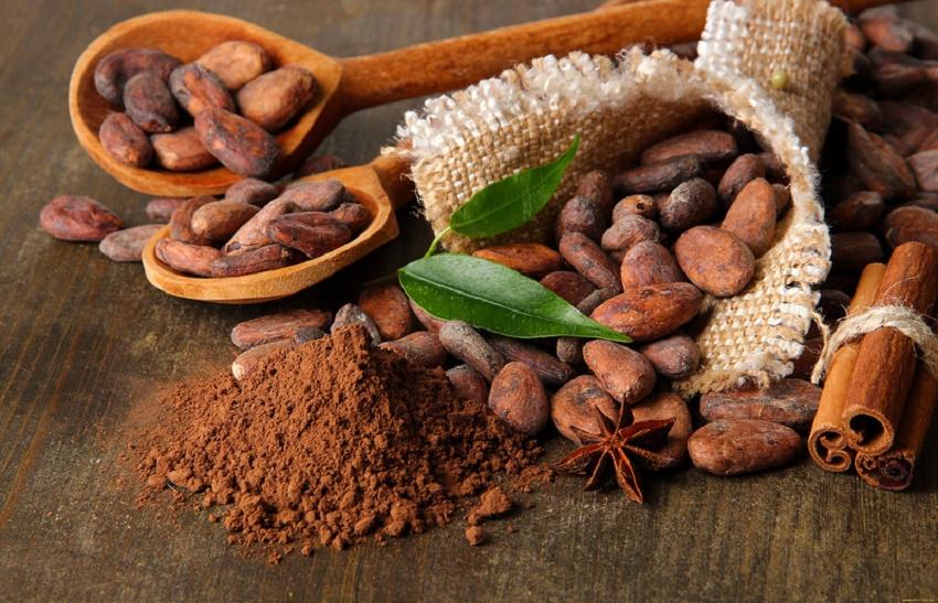 Kem dưỡng da ban đêm từ bơ và cacao