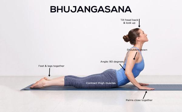 Tư thế Bhujangasana